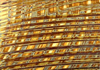 Copper 819 (P)