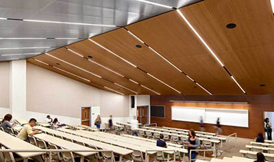 wood veneer ceiling panels